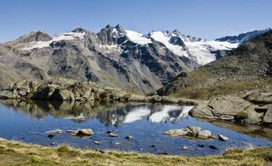 Foto auf Acrylglas Reflexion le innevate vette si riflettono nel laghetto alpino