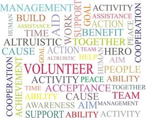 volunteer work background