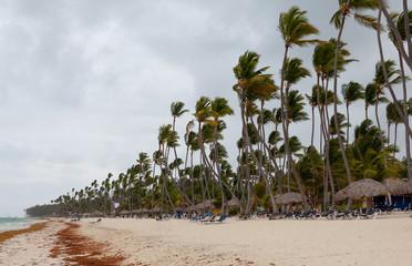 Hurricane on the beach