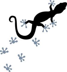 Gecko with footprint