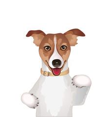 Dog, jack russel,  vector illustration isolated on white background