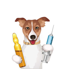 Dog with syringe and ampoule vector illustration isolated on white background