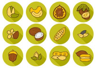 Set of cartoon hand drawn objects on nuts theme: hazelnut