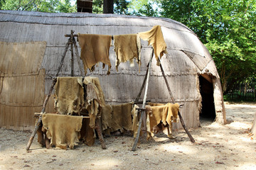 Animal skins drying at a replica of a native American house