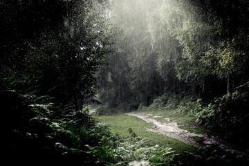 Rain storm - Heavy downpour outdoors whilst walking