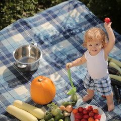 Small boy on picnic