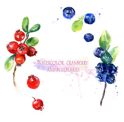 Watercolor illustration. Ripe red cranberry and blue blueberries on white background. Tasty berries for design.