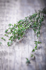 Green thyme on the wood table