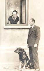 Old photo depicting senior couple and dog