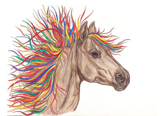 Beautiful horse illustration with bright colorful creative mane.