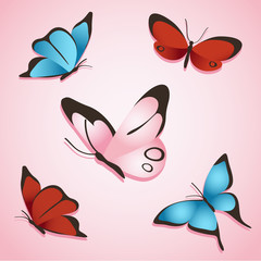 Set of Sweet Butterfly : Vector Illustration