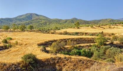 Mountain landscape, Troodos, Cyprus Island
