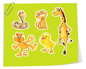 Wild animals on yellow paper