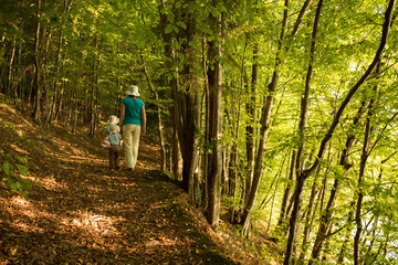 mother with children walking in colorful autumn forest
