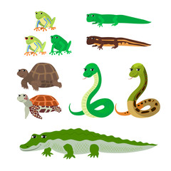 Cartoon set tree frog newt aquatic turtle snake crocodile