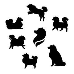 Ddwarf spitz vector silhouettes.