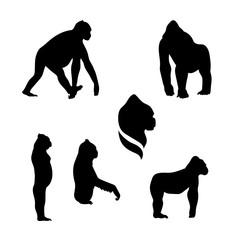 Gorilla monkey vector silhouettes.