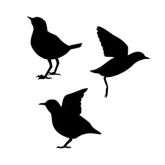 Dipper vector silhouettes.
