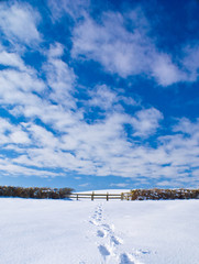 Footprints in snow leading to fence with blue cloudy sky.