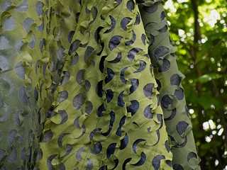Army military hunting birding camouflage net