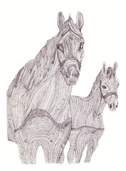 Illustration of mare and foal. Black and white style. Hand-drawn