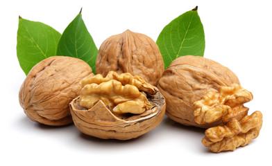 walnut group