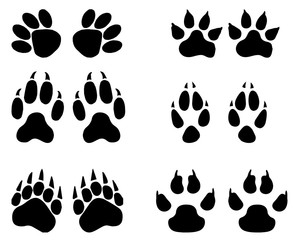 Set of animal  trails, footprints with name isolated on white background. silhouettes  illustration