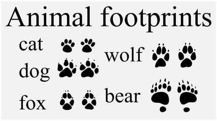 Set of animal  trails, footprints with name isolated on white background. silhouettes vector illustration