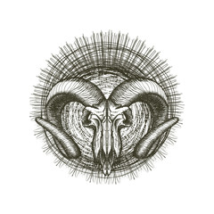 Grunge Goat Skull Hand Drawn Tribal Punk