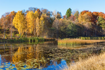 Autumn colors reflecting in a lake