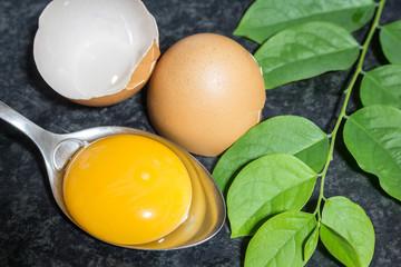 Fresh egg on black table background