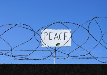 Flüchtling hinter Stacheldraht hält Schild mit Aufschrift PEACE hoch