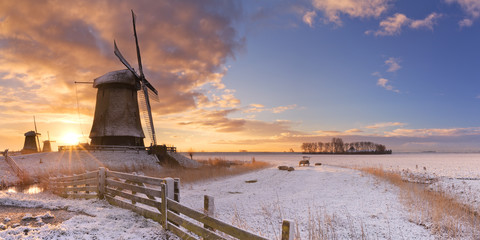 Wall Mural - Traditional Dutch windmills in winter at sunrise
