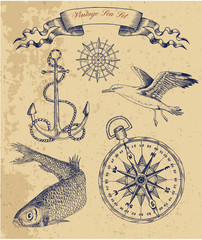 Vintage sea set with fish, gull and anchor.