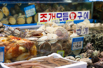Scallops and other shells at fish market