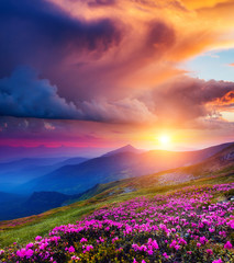 Fototapete - magical mountains landscape