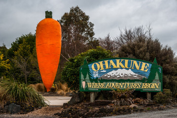 Ohakune road sign and carrot