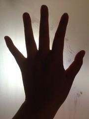 手のシルエット