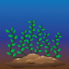 illustration green seaweed in the deep sea