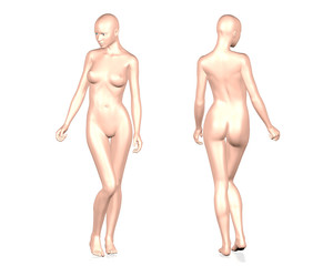 3D female body on white background