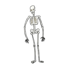 cartoon spooky skeleton