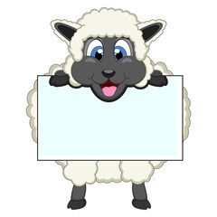 Sheep with white board