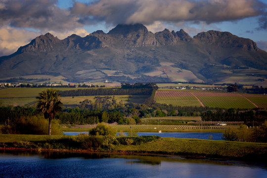 Helderberg Nature Reserve, Cape Town, South Africa