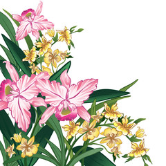 Pink and yellow flowers on a white background