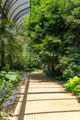 Tropical greenhouse, the Umbracle is a wood brick construction for tropical plants in the Citadel Park Barcelona. The Parc de la Ciutadella is situated in the Barcelona district Ciutat Vella