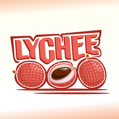 Vector illustration on the theme of lychee