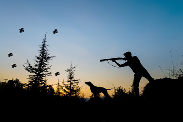 Foto op Aluminium Jacht Hunting. Hunter and dog at sunset.