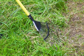 Metallic rake and grass
