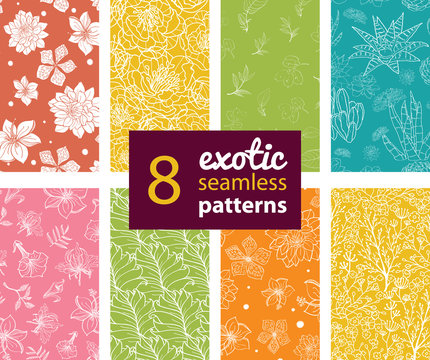 Vector Exotic Flowers Eight Set Seamless Patterns. Succulent