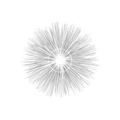 Engraving star. Monochrome star burst